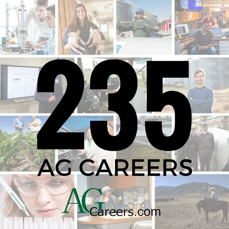 235 Careers In Agriculture Learn About Them Http Www Agcareers Com Career Profiles Utm Content Buffer6d0 Agriculture Education Ag Careers Agriculture Jobs