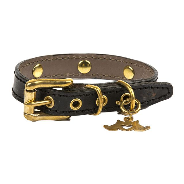 Photo of Be Two collar for Urban Jet dogs