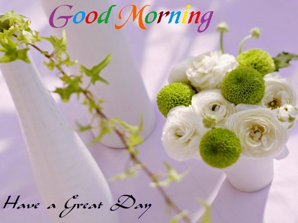 Wallpaper download for whatsapp - Good Morning Images Pictures Good Morning Hd Wallpapers Cover Pics For Facebook Whatsapp Conversations