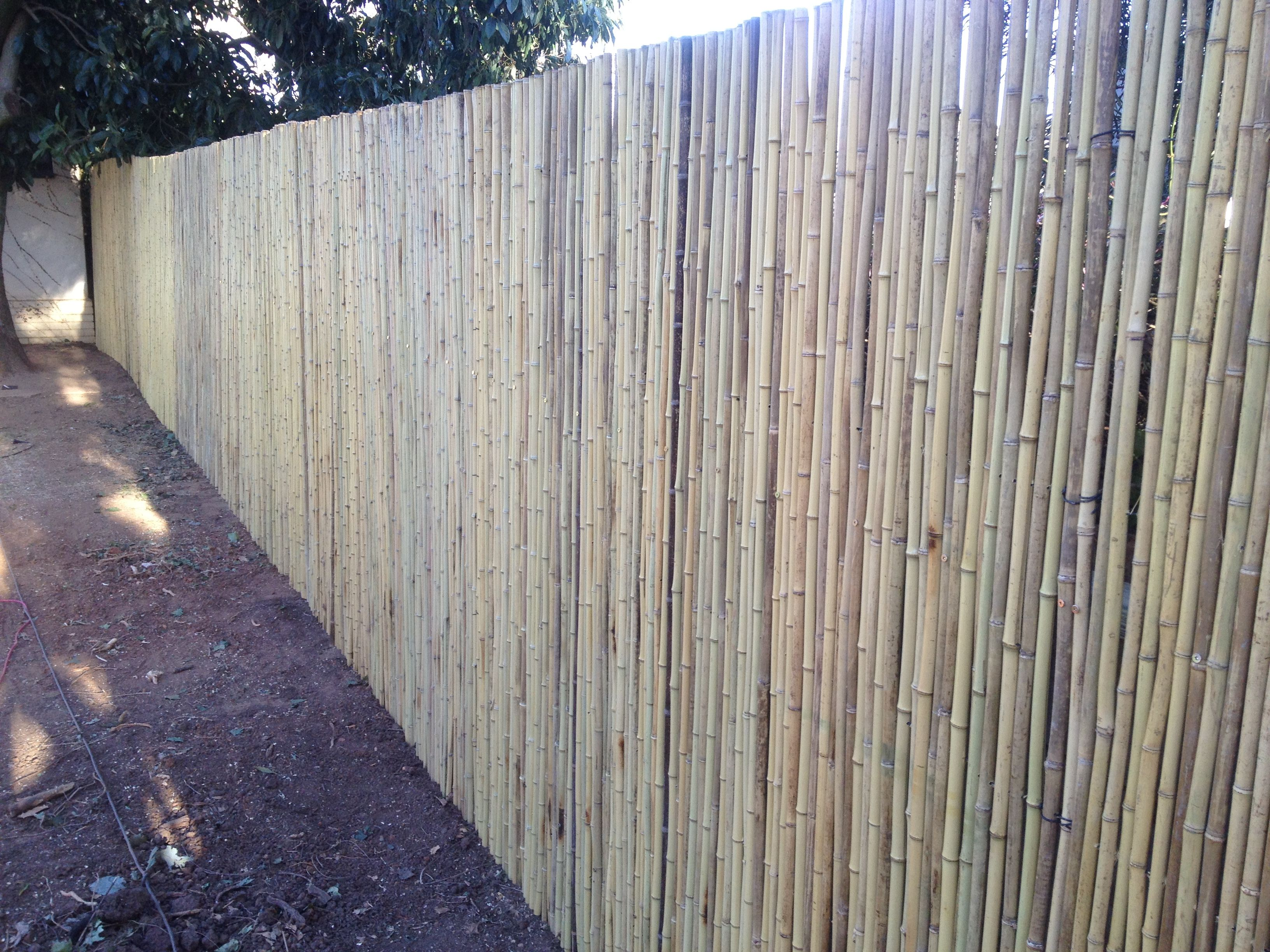 Natural bamboo fencing at 240cm height to adding a great solution