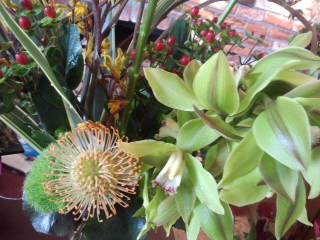orchid and protea arrangement  mfdesigns