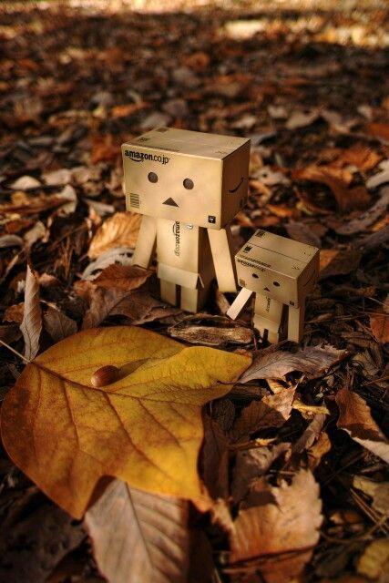 Danbo-Autumn