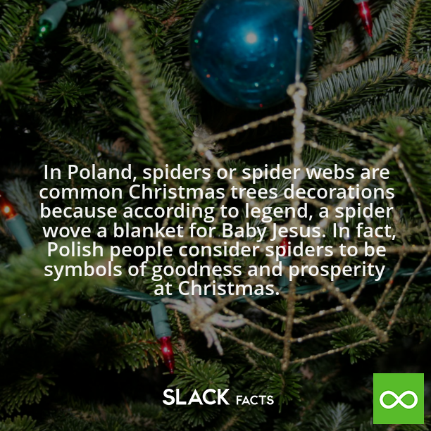 Did you know? In Poland, spiders or spider webs are common ...