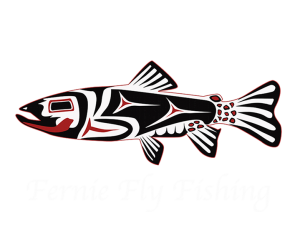 Fly Fish the Elk River in Fernie, BC with us! www