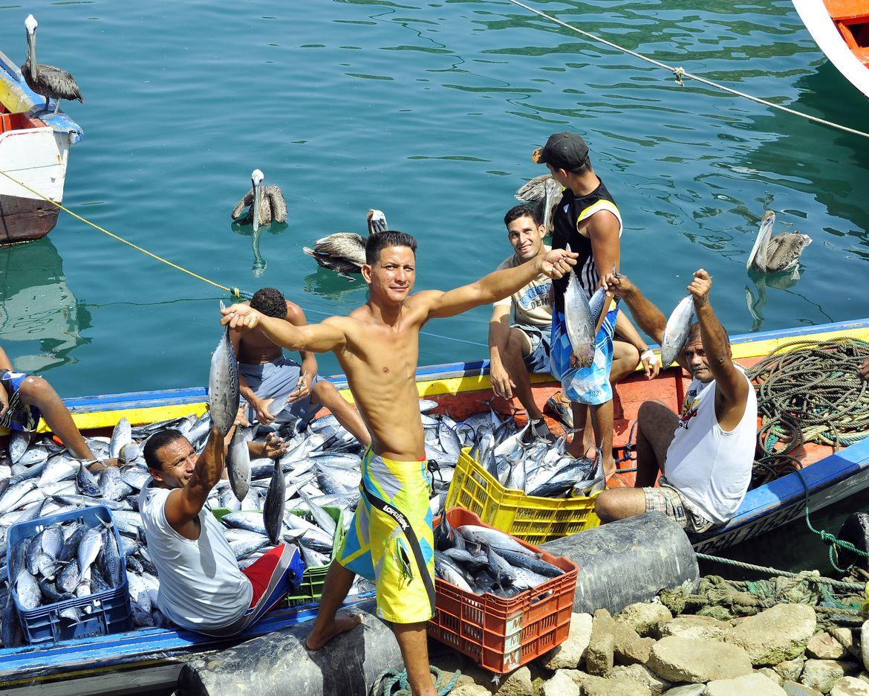 llegando los botes de los pescsdores. Isla de Margarita. Venezuela. by Alfonso Mejía on 500px