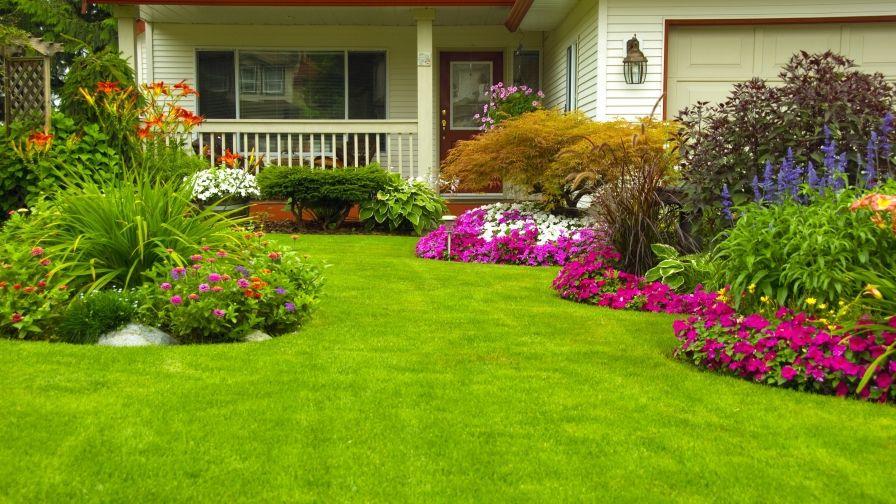 beautiful green home garden lawn hd wallpapers download