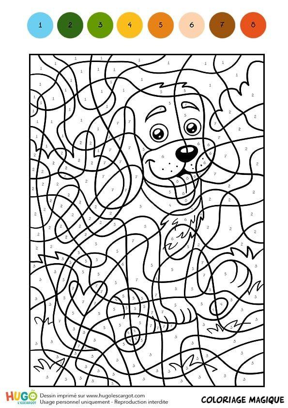 Coloriage et illustration d 39 un coloriage magique cm1 un - Dessin d un chien ...