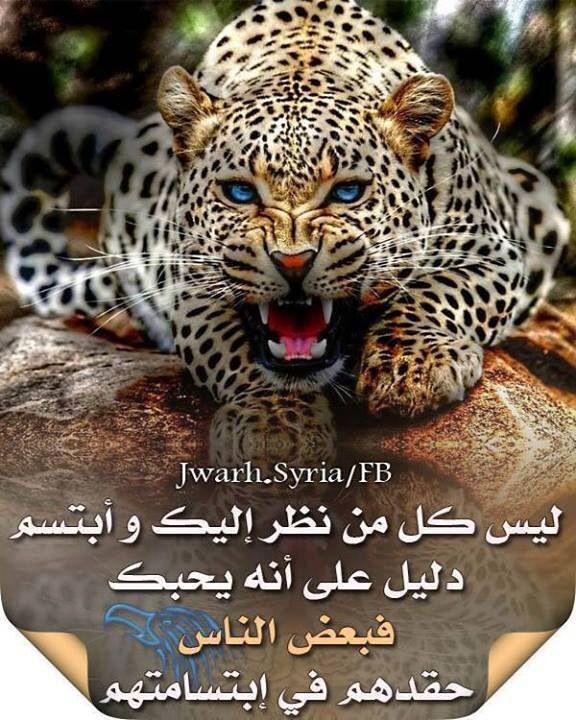 Epingle Par Saba Hashem Sur Arabic عربي Pinterest