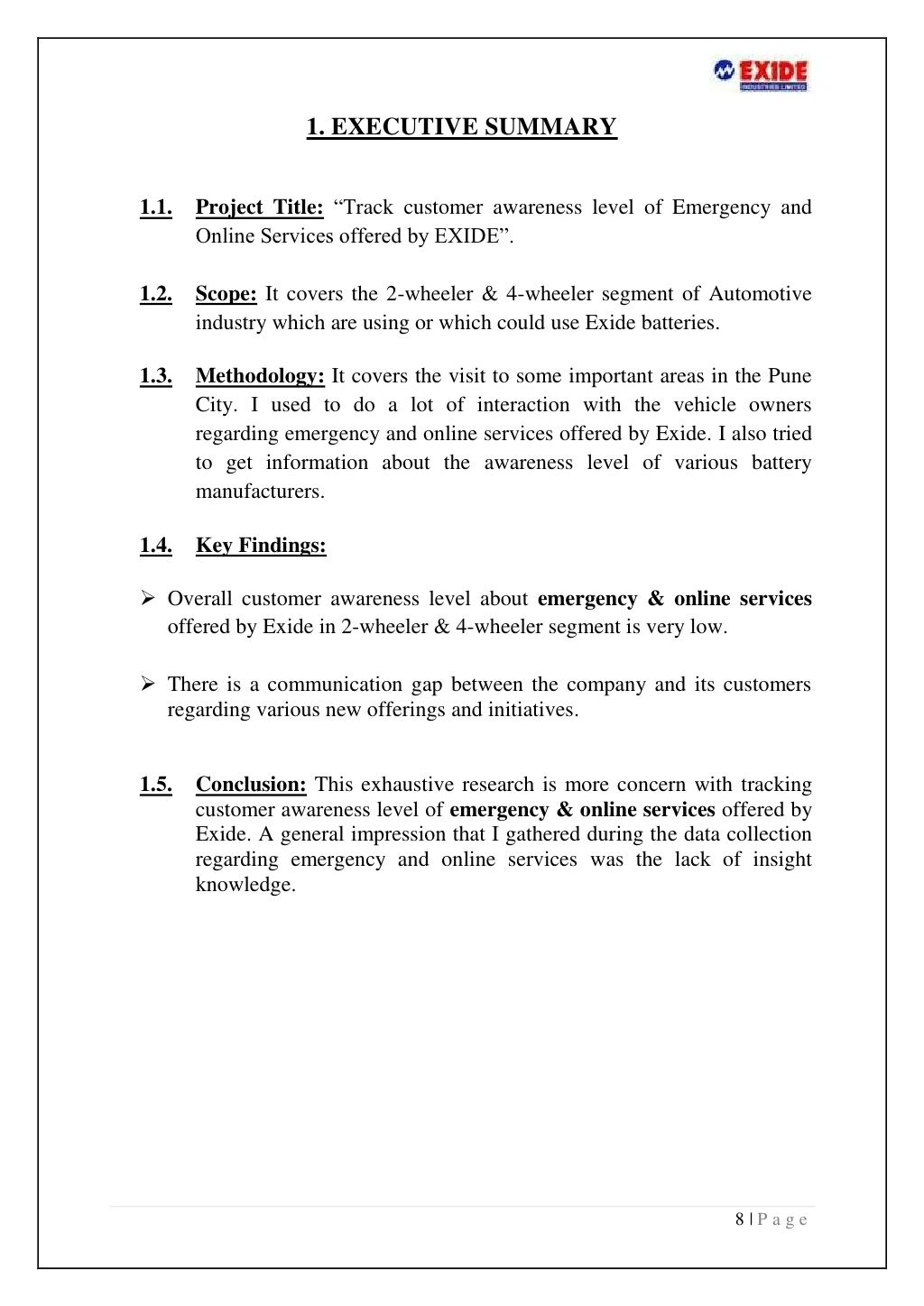 Recommendations Summer Projects Executive Summary Emergency Title page with executive summary