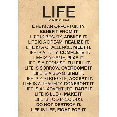 Life Is An Opportunity Benefit From It I Quotes Life