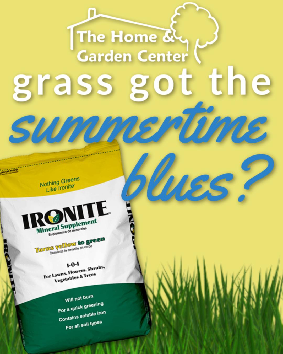 Grass Got The Summertime Blues Grass Summertime How To Apply