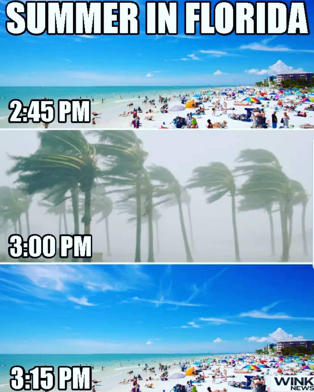 Florida Bipolar Weather Meme