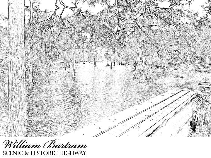 Image result for scenic coloring pages for adults