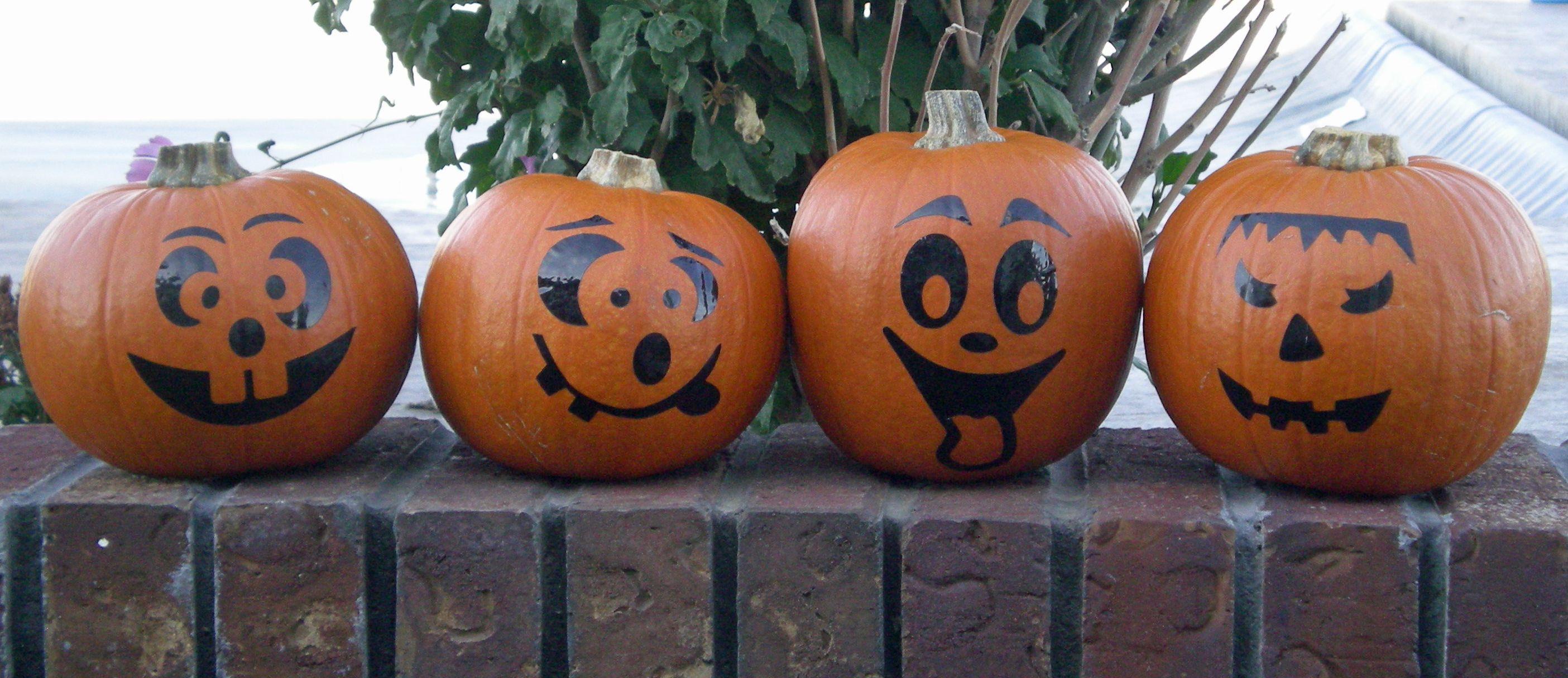 SmallPumpkins.jpg (2809×1215)