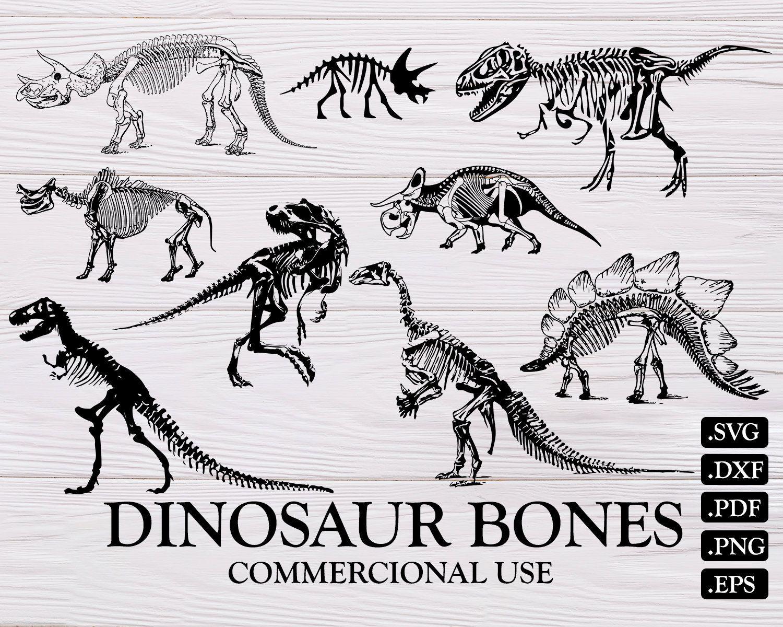 Dinosaur Bones Svg Dinosaur Svg Dinosaur Silhouette Dinosaur Skeleton Bones Svg Reptile Svg Dinosaur Clipart Dinosaur Silhouette Dinosaur Dinosaur Bones