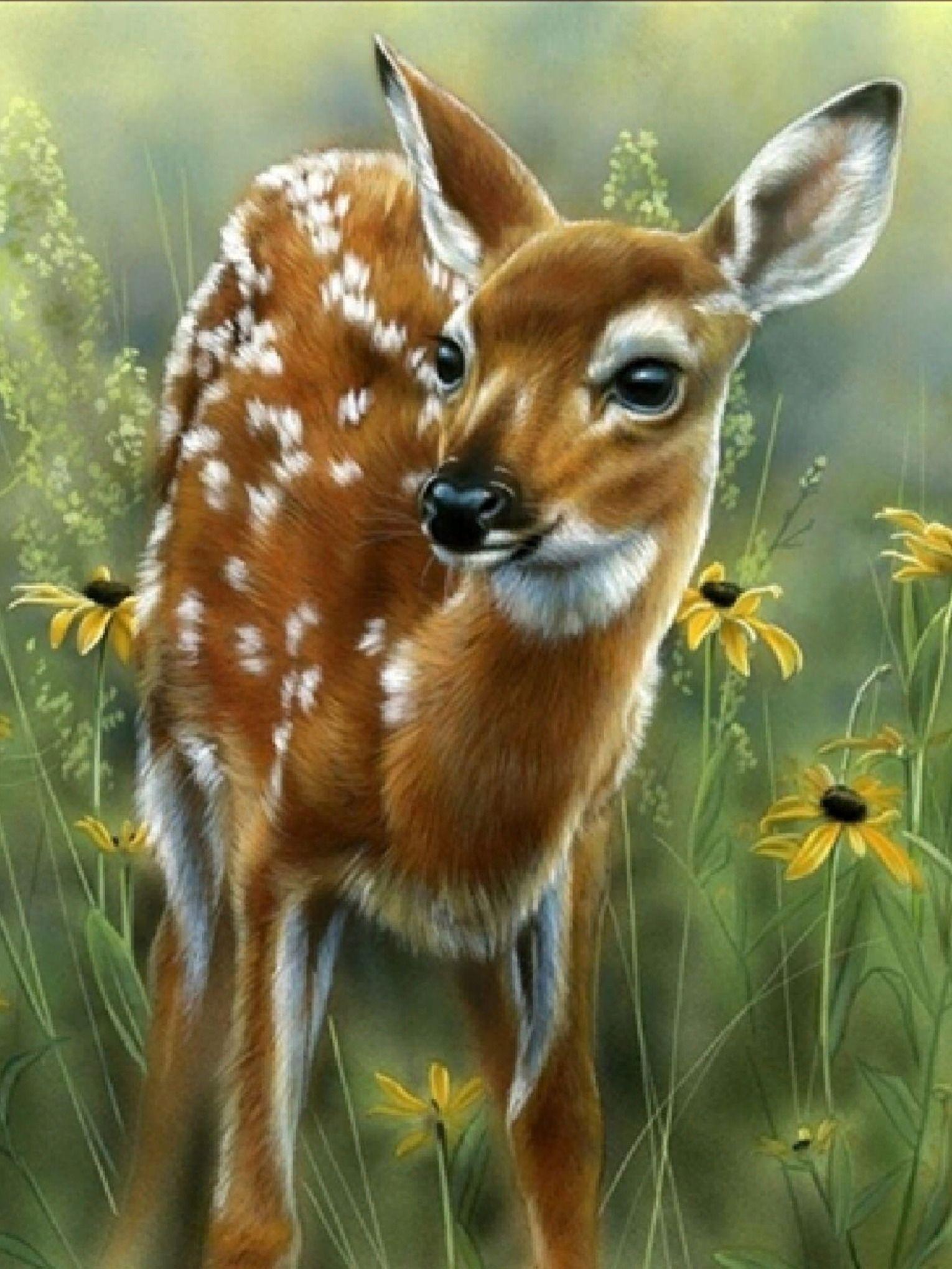 схем углич красивые картинки анимационные о животных крыму можно увидеть