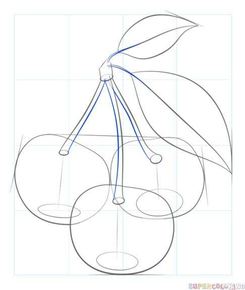 wie zeichnet man kirschen schritt für schritt zeichnen