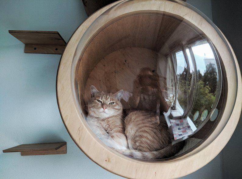 Cat House Indoor Cat Houses Cat Bed Unique Cat Beds Modern Cat Etsy Unique Cat Bed Cat Houses Indoor Cat Bed