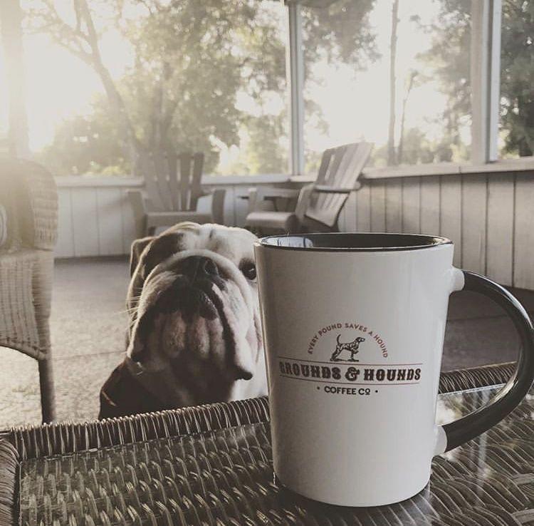 """My"" Mug Coffee hound, Mugs, Coffee coupons"