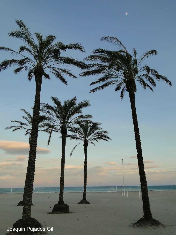 Playa De Cullera En 2021 Castellon De La Plana Playa Castellon
