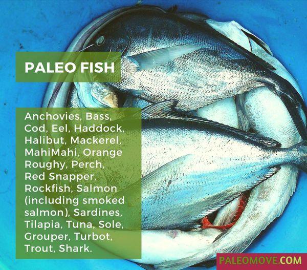 Which Fish you can take in paleo diet?   #paleo-diet #paleodiet #paleo