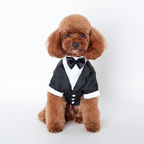 Soft Cotton Blend material keep your puppy more comfortable     Soft Cotton Blend material keep your puppy more comfortable  Features   durable  fashion