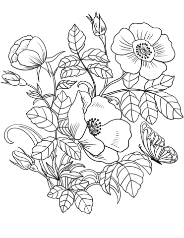 Spring Flowers Coloring Page Coloring Colouring Coloringbookpage Coloringpage Freepri Flower Coloring Sheets Spring Coloring Sheets Spring Coloring Pages