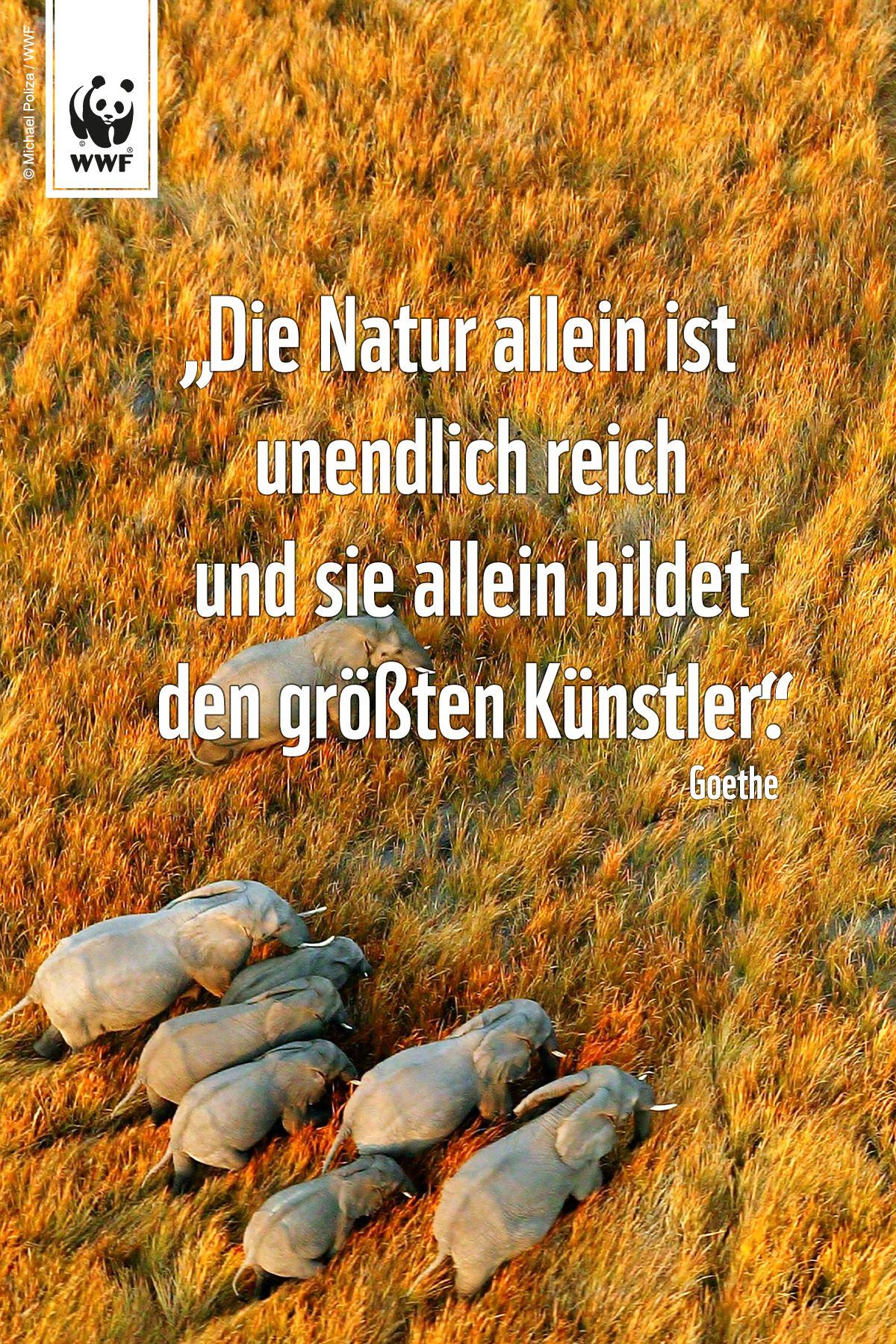 Zitat Zum Sonntag Schone Spruche Zitate Gedanken Natur
