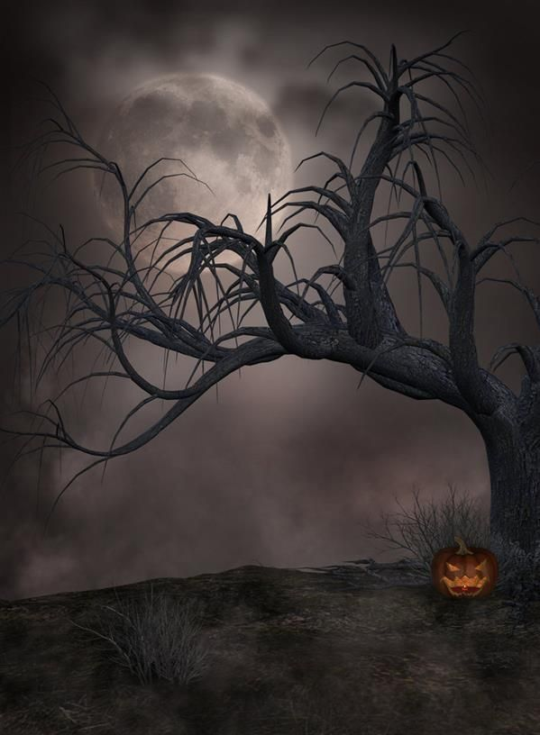 Horror Dark Gothic Backgrounds For Photoshop Manipulations Gothic Background Photoshop Backgrounds Scary Backgrounds Horror background hd images for