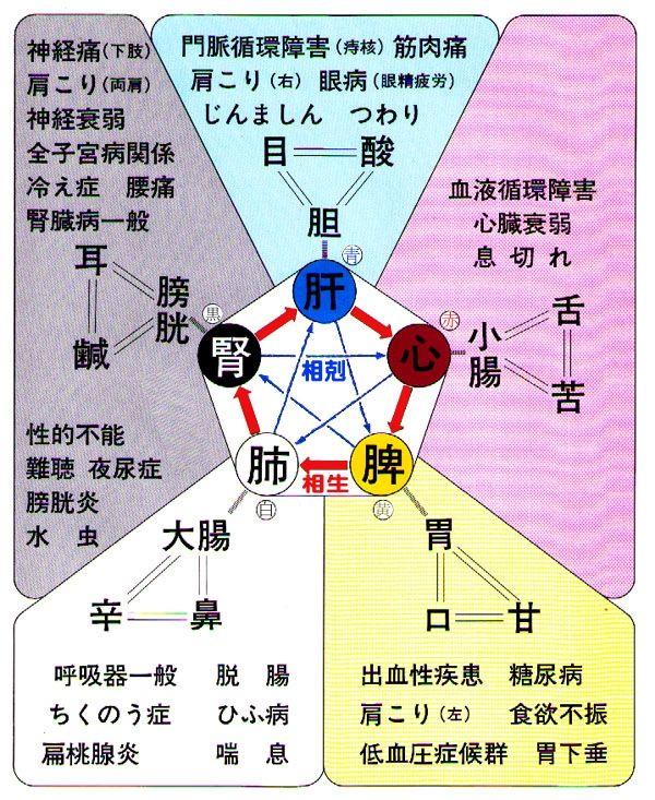 「見島発 『五臓六腑を...」記事の畫像(畫像あり) | キネシオロジー. 経穴. 陰陽 五行