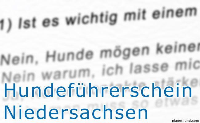 Testfragen Fur Den Hundefuhrerschein In Niedersachsen Mit 15 Fragen Zum Sachkundenachweis Gefragt Wird Zum Thema Ausbildung Hunde Hundehaltung Hundeerziehung