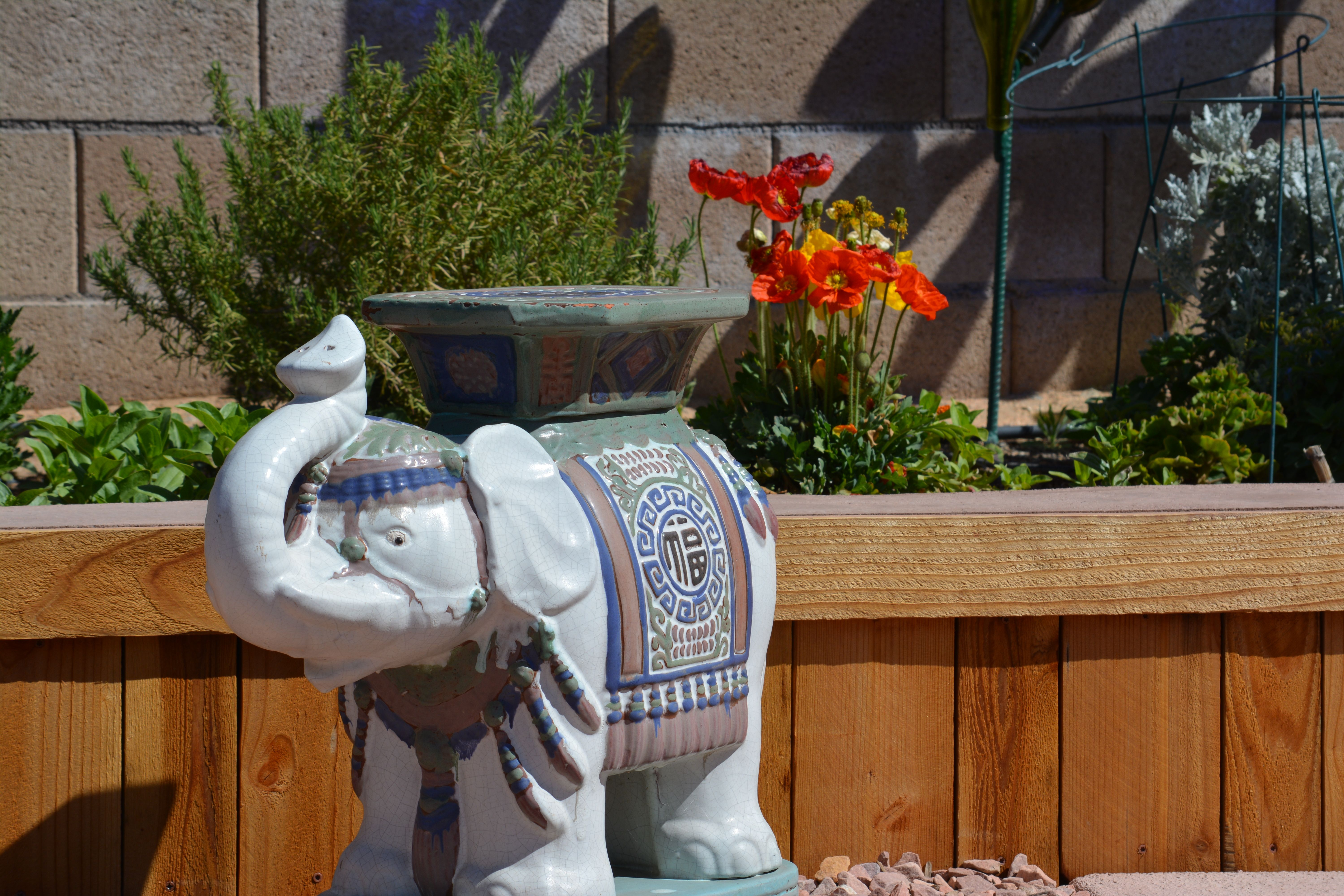 Uncle Ralph's elephant looks good near the poppies.