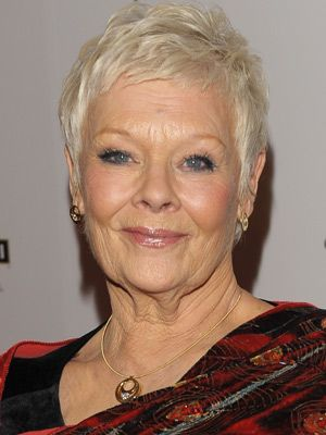 www hair style for judi dench m masters of the judi 6589