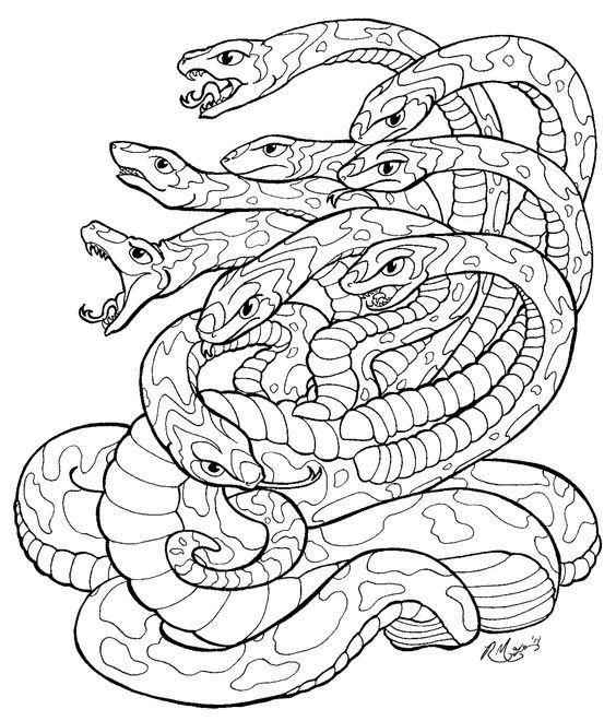 Pin de Barbara en coloring reptile   Pinterest