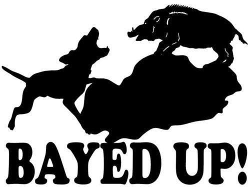 Wild Hog Bayed Up Decal Boar Hunting Truck Window Sticker - Sporting dog decals