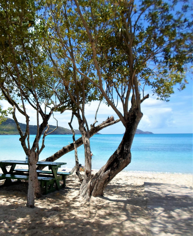 Desert Island Beach: Beach Picnic, Beach, Most Beautiful Beaches