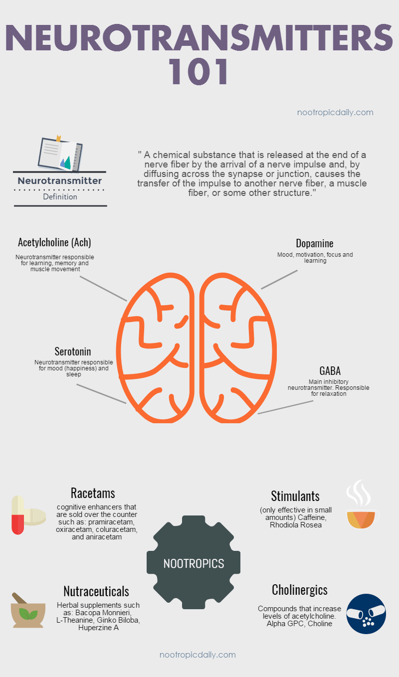 nootropics and neurotransmitters 101 an infographic. get a better