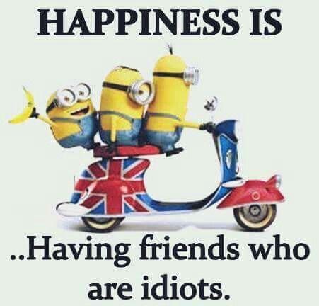 Friends Who Are Idiots Funny Minion Quotes Minion Jokes Minions Funny