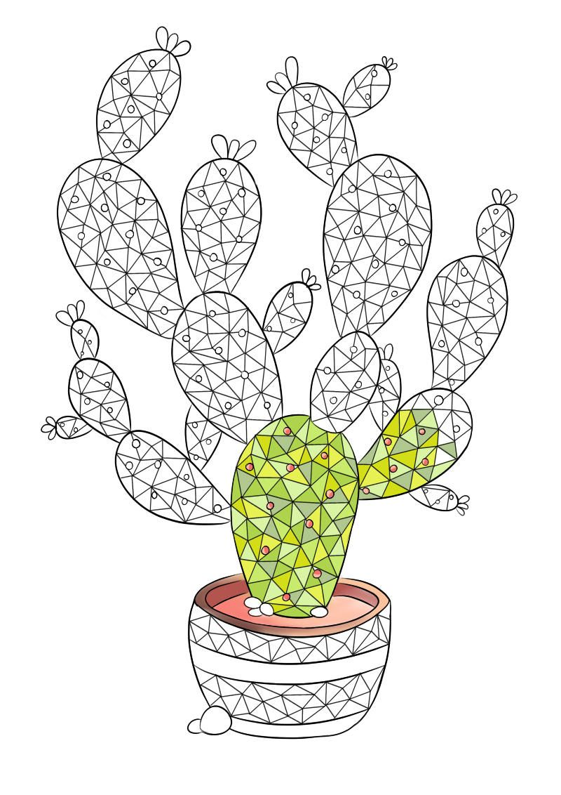 adult coloring page succulent plant coloring page cactus coloring page for adult polygonal