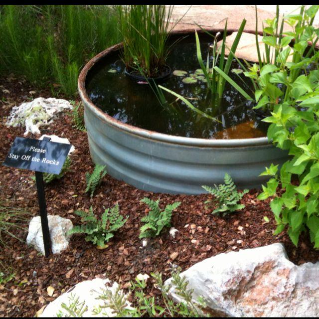 Galvanized Tub Pond