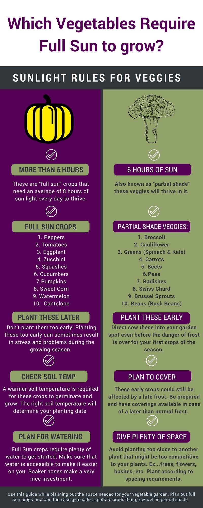 Simple Vegetable Garden Layout Plans & Spacing Tips for Home Gardens – Vegetable garden planner