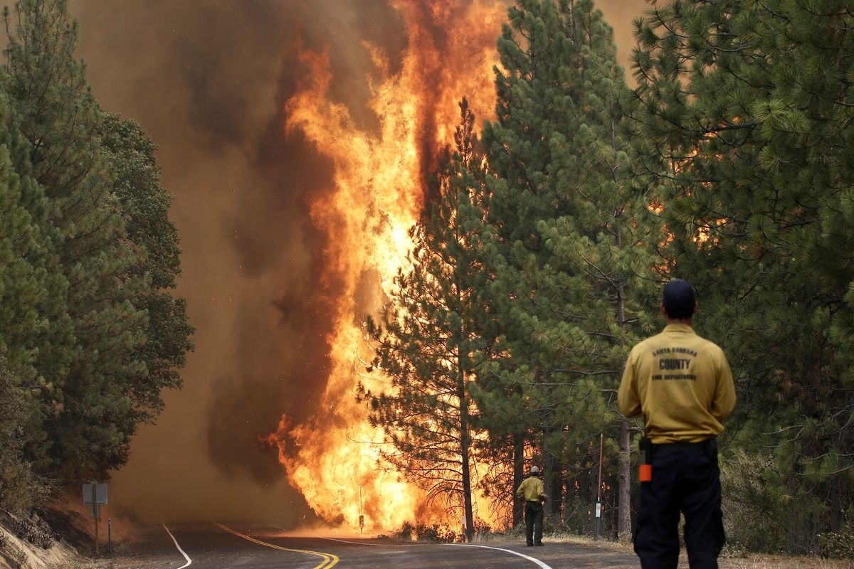 California Is On Fire And Its Gop Rep Insists It Has Nothing To Do With Global Warming Wildland Fire Wildland Firefighter Military Pictures
