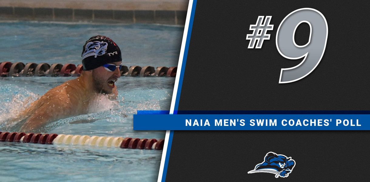 Photo for mens swimming drops one spot no 9 in naia