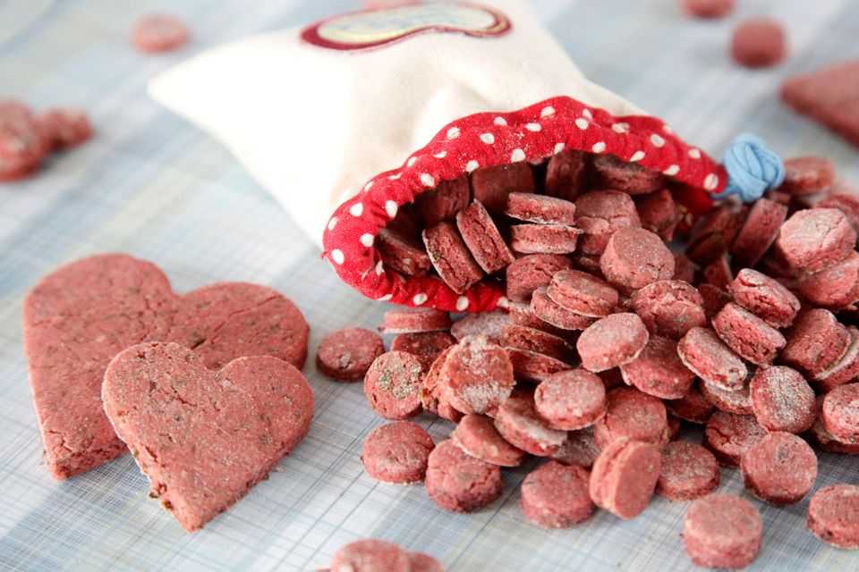 Recipe Quot Stinky Pinky Quot Salmon Training Treats Dog Treat