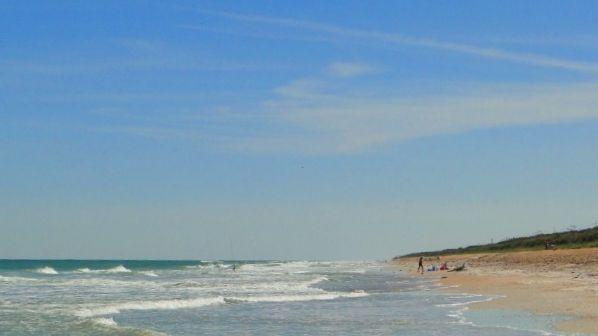 Natural Wonder Apollo Beach Canaveral National Seas