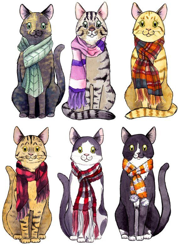 Cat Gift Tags Christmas Cat Tags Cat Lover Gift 6 Assorted Cat