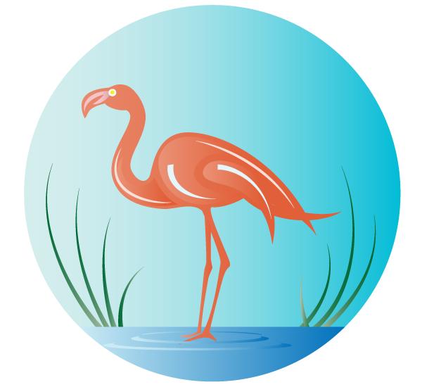 Flamingo Vector Art