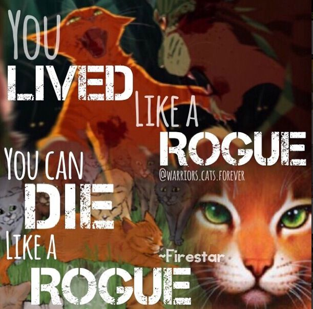 Which Dawn Of The Clans Warrior Cat Are You: You Lived Like A Rogue You Can Die Like A Rogue -Firestar