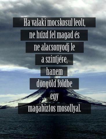 szép magyar idézetek tumblr magyar idézetek   Google keresés   Motivation for today
