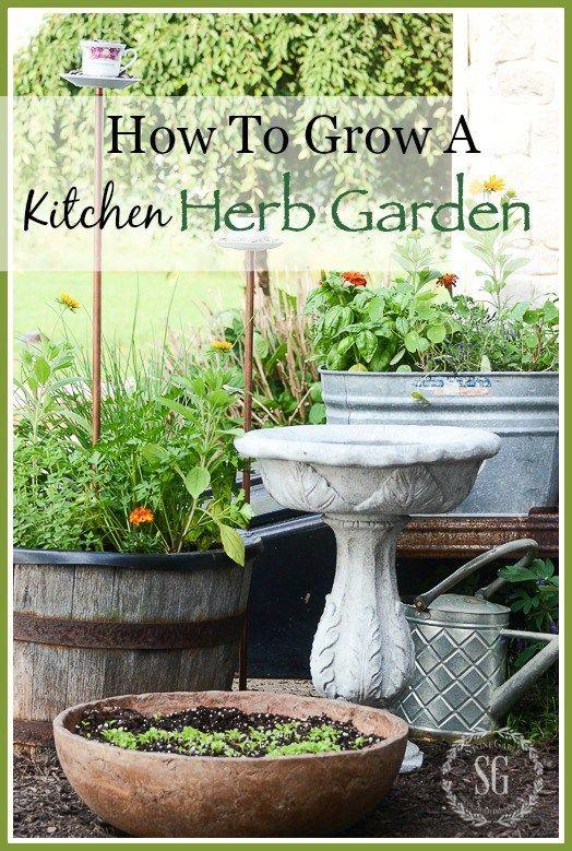 how to grow a kitchen herb garden herb garden in kitchen herb garden kitchen herbs on outdoor kitchen herb garden id=83004